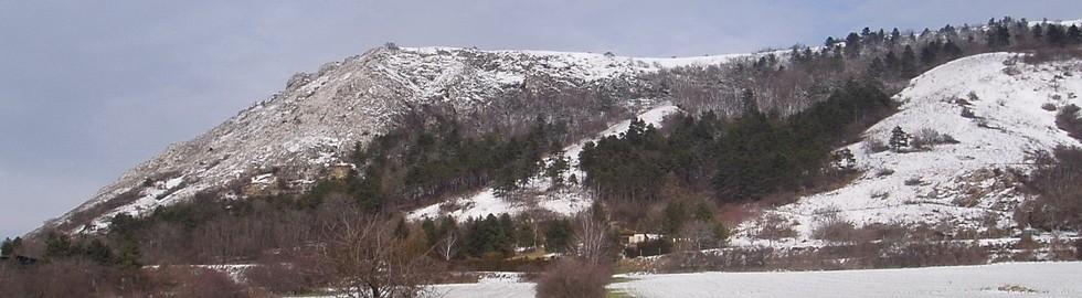 Braunsberg Steppenrasen