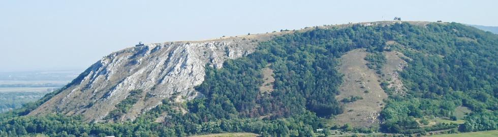 Braunsberg Felssteppen